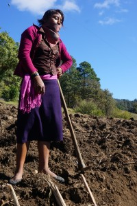 Zapatista student surveys her work planting sugar cane as the first plant of her school's Food Forest in the highlands of Chiapas, Mexico.