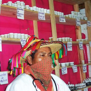 Zapatista health promoter and herbalist in Aldama, Chiapas.
