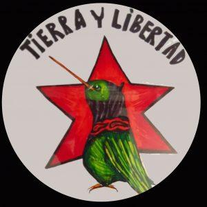 EZLN Hummingbird Collection